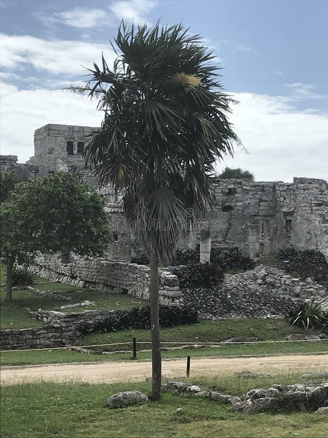 Playa- del Carmenmayaruinen Tulum stockbild