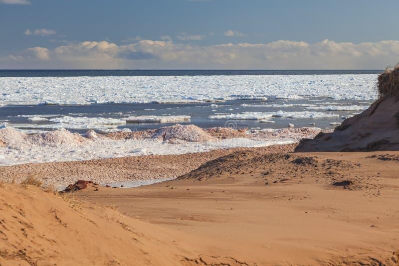 Playa del invierno fotografía de archivo