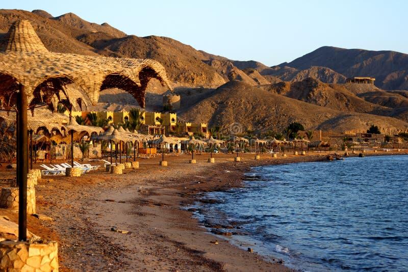 Playa del Mar Rojo imagen de archivo libre de regalías