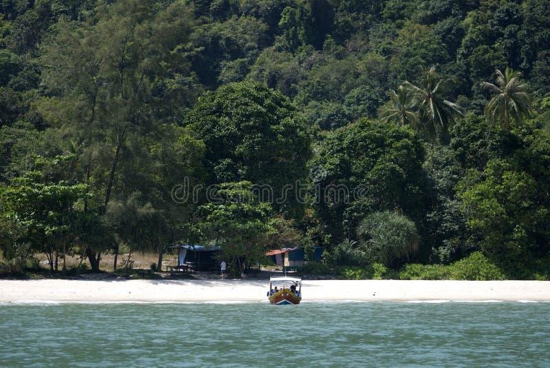 Playa del mono, parque nacional de Penang, Malasia fotos de archivo
