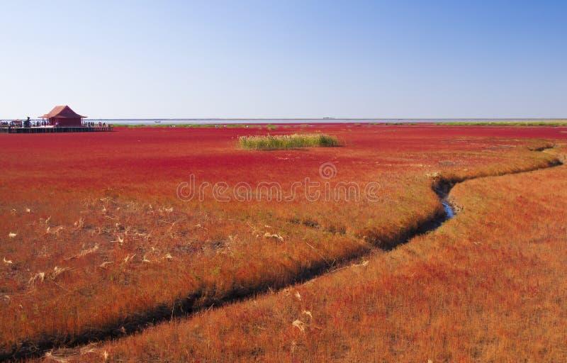 Playa del otoño fotos de archivo