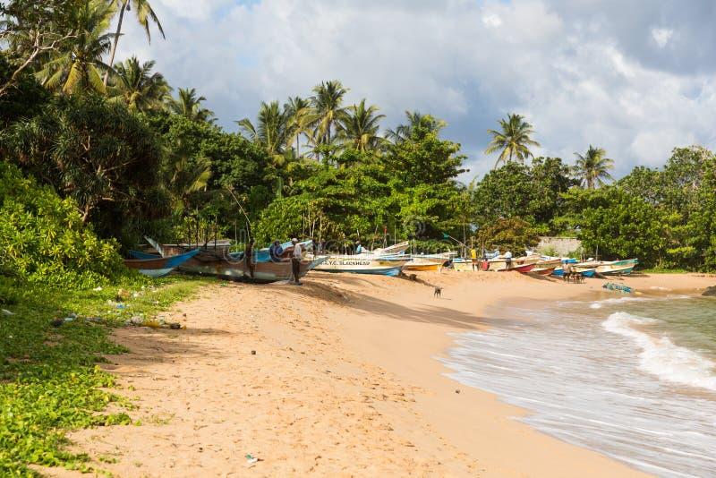 Playa del paraíso de Sri Lanka con la arena blanca, palmeras y una puesta del sol escénica imagen de archivo