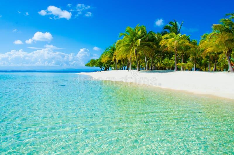 Download Playa Del Paraíso En La Isla Hermosa Imagen de archivo - Imagen de reenactment, salto: 41918243