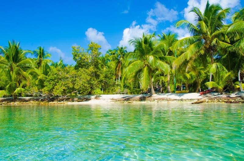 Download Playa Del Paraíso En La Isla Hermosa Foto de archivo - Imagen de isla, salto: 41918260