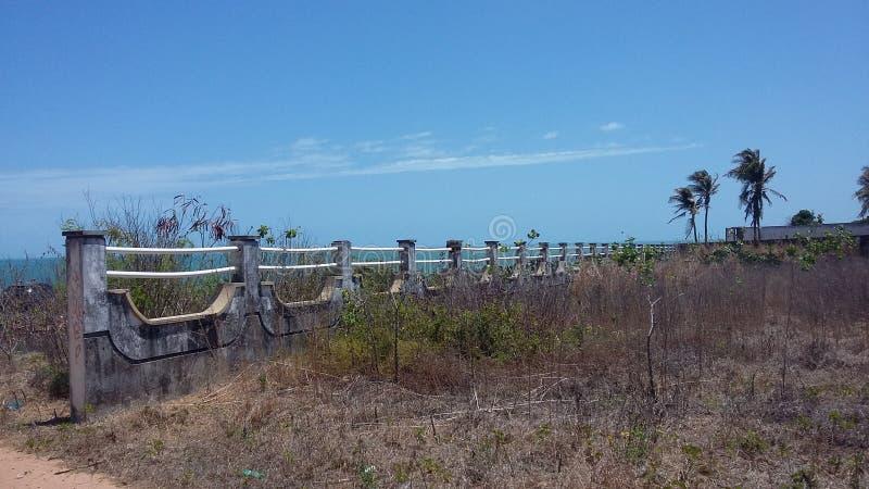 Playa del verano del árbol de la naturaleza del azul de cielo foto de archivo