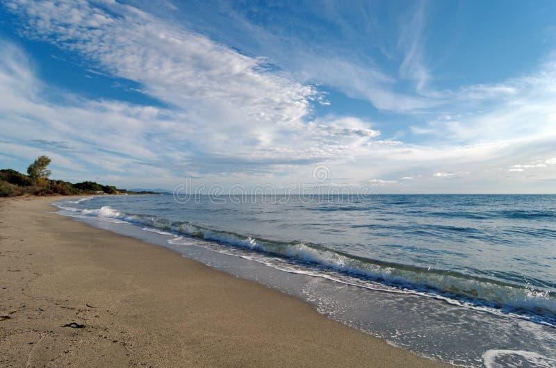 Playa del verde de la costa en Córcega imagen de archivo libre de regalías