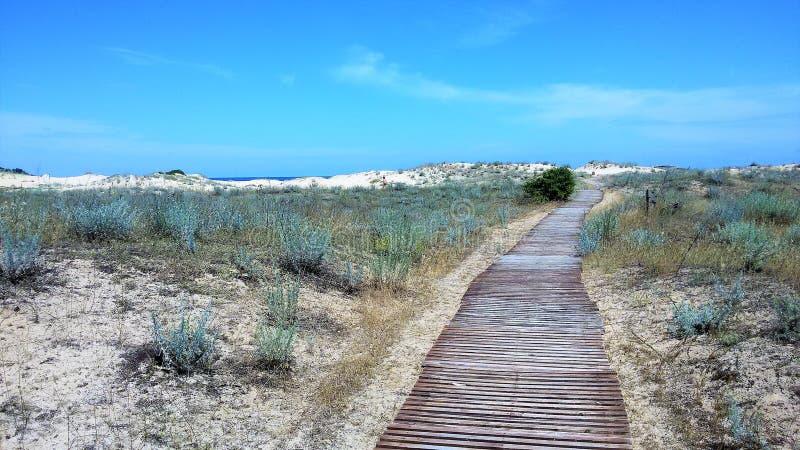 Playa en Bulgaria foto de archivo