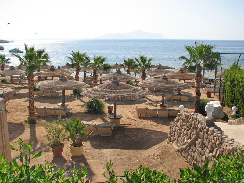 Playa en Egipto Playa del centro turístico foto de archivo