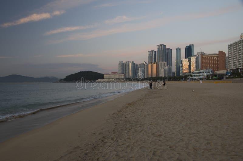 Playa en el amanecer, Busán Corea de Haeundae imagen de archivo libre de regalías