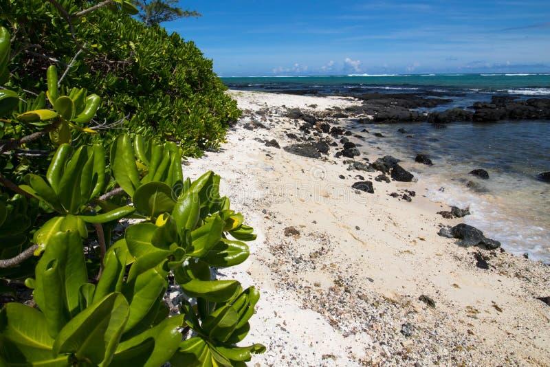 Playa en Isla Mauricio fotografía de archivo