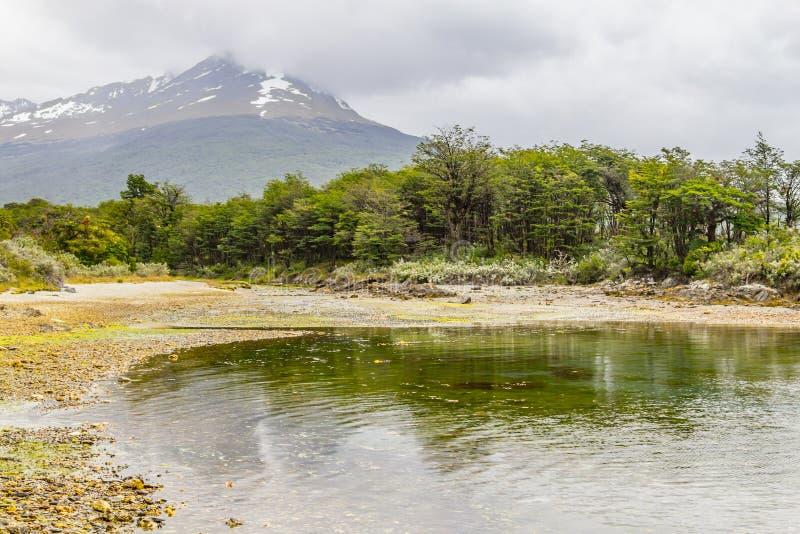 Playa en la bahía de Lapataia, Tierra del Fuego National Park foto de archivo libre de regalías