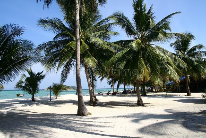 Download Playa En La Isla Tailandesa Foto de archivo - Imagen de océano, playa: 44854438