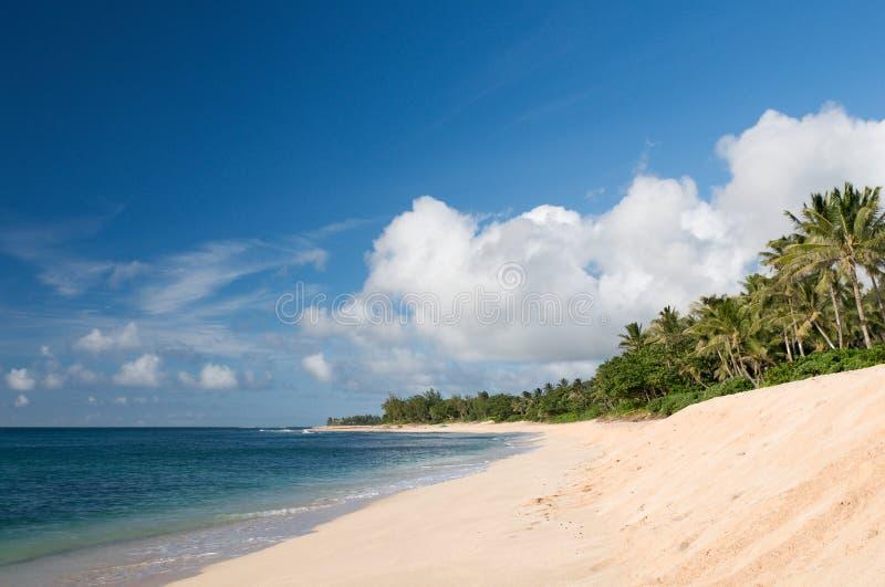 Playa en la orilla del norte de Oahu, Hawaii fotos de archivo libres de regalías