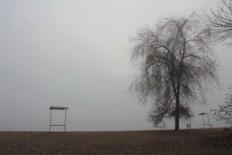 Playa en niebla imagenes de archivo