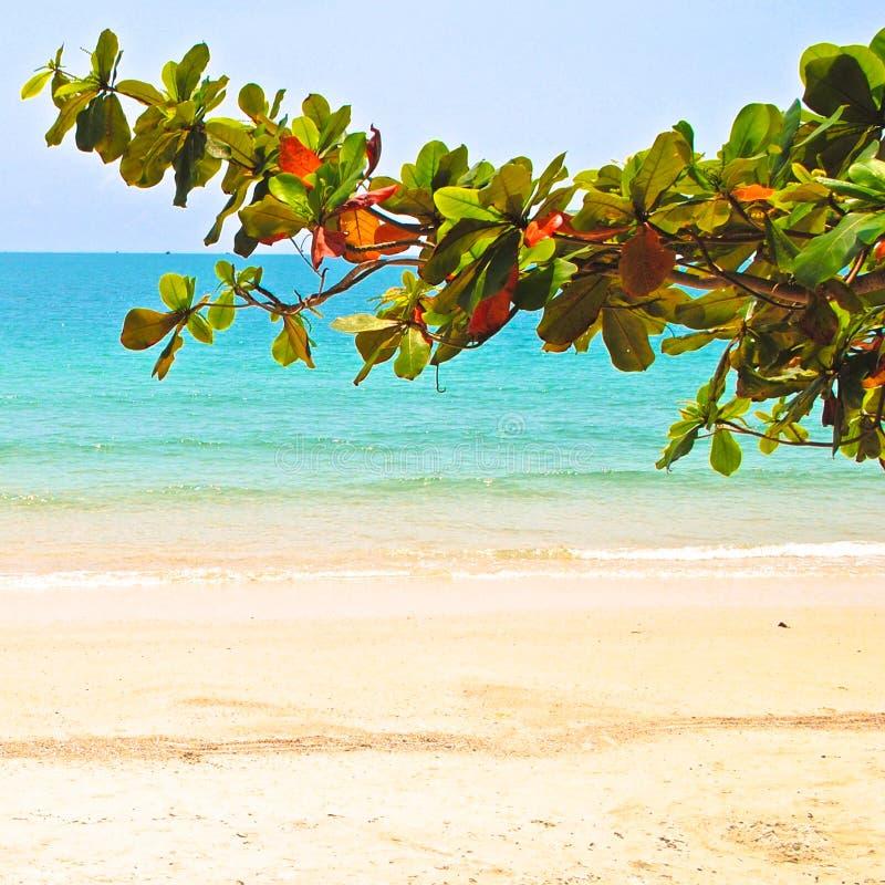 Playa en Sihanoukville fotos de archivo libres de regalías