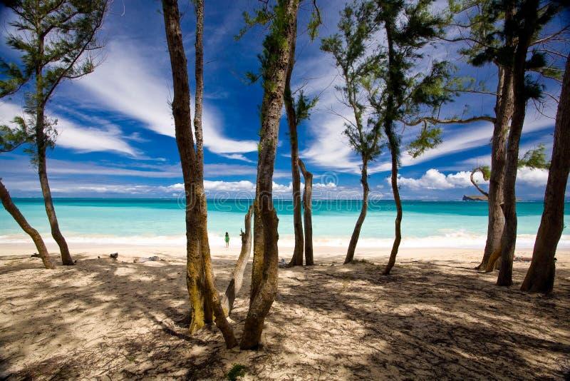 Playa escénica foto de archivo