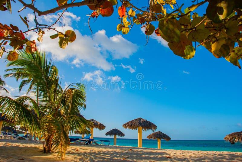 Playa Esmeralda, Holguin, Kuba Karibisches Meer: erstaunliche herrliche, erstaunliche Ansicht eines tropischen weißen Sandstrande lizenzfreie stockfotos