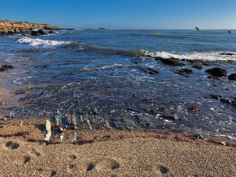 Playa Estatal Bean Hoolow Seascape de California foto de archivo