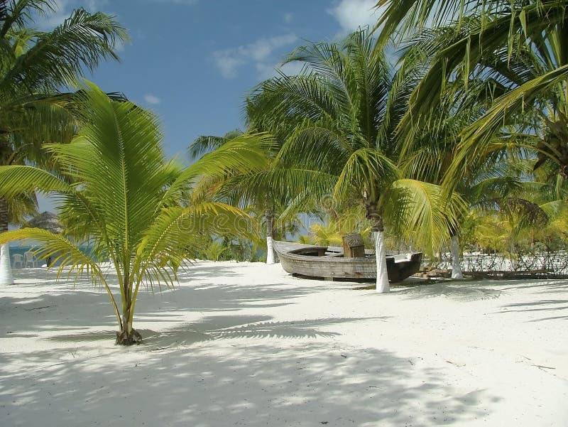 Download Playa Gaviota stock image. Image of relaxing, ocean, mexico - 202709