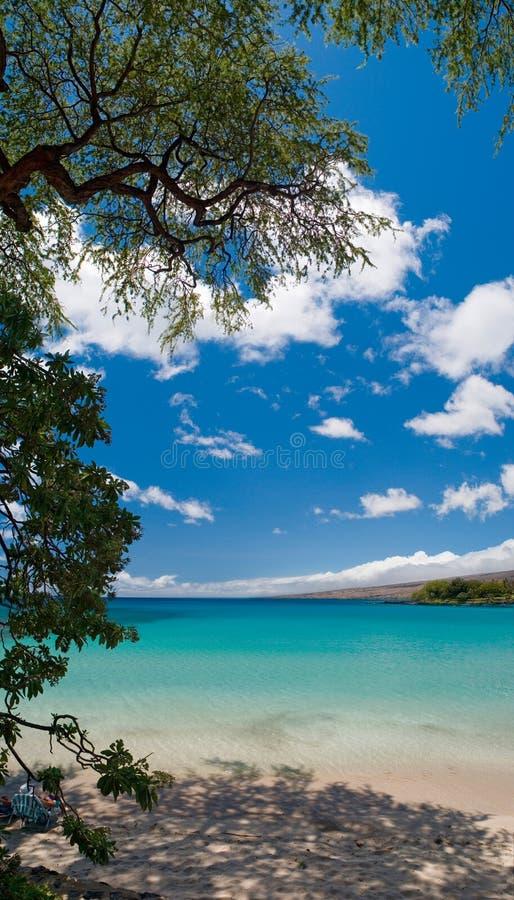 Playa hawaiana imagenes de archivo