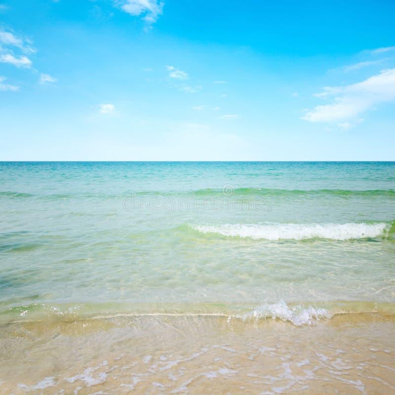 Download Playa hermosa imagen de archivo. Imagen de travieso, contexto - 42430751