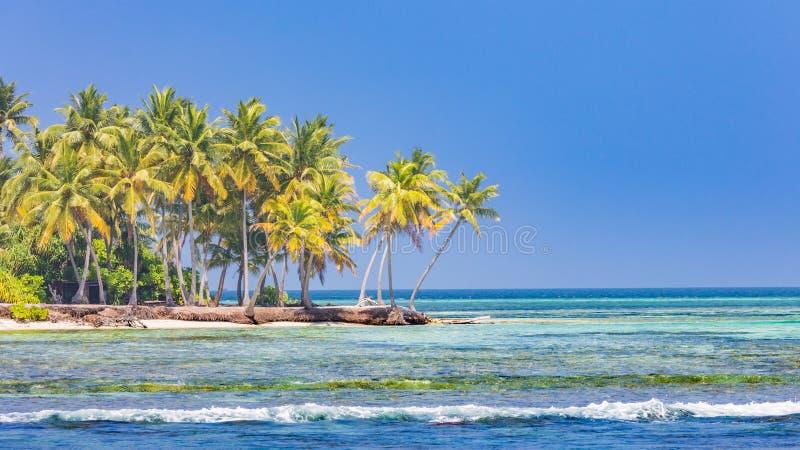 Playa hermosa con las palmeras y el cielo cambiante Concepto del fondo del día de fiesta del viaje de las vacaciones de verano Pl fotos de archivo libres de regalías