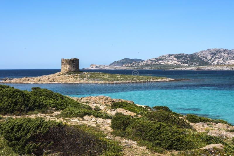 Playa hermosa de Pelosa del La con poca torre rodeada por el mar de la turquesa, Cerdeña, Italia imagen de archivo libre de regalías