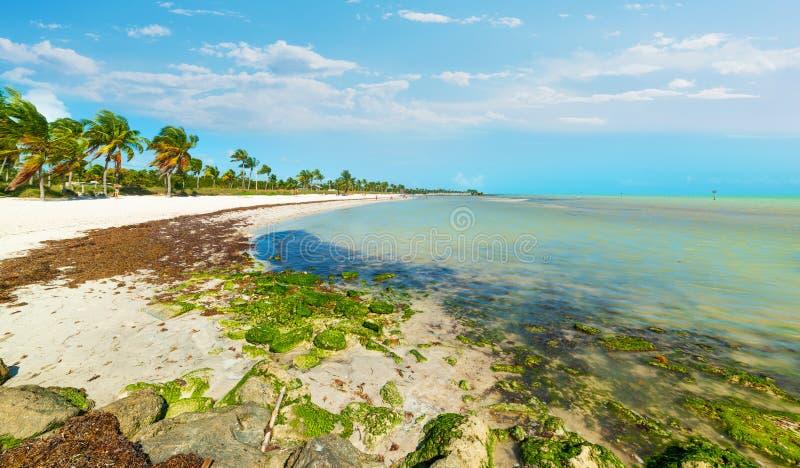 Playa hermosa de Smathers en un día claro fotos de archivo
