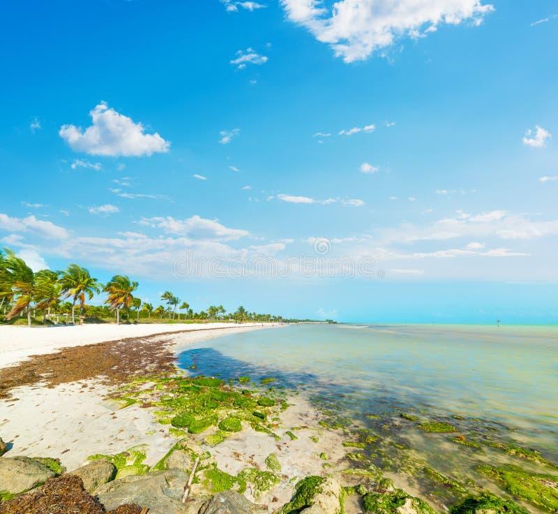 Playa hermosa de Smathers en un día soleado imagen de archivo
