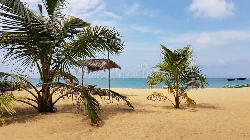 Playa hermosa del pescador en Sri Lanka imagen de archivo libre de regalías