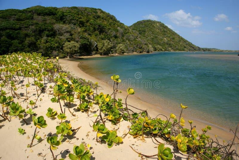Playa hermosa en la bahía de Kosi, Suráfrica imagenes de archivo