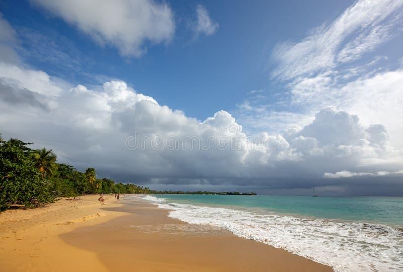 Playa hermosa en Martinica, Caribbeans imagen de archivo libre de regalías
