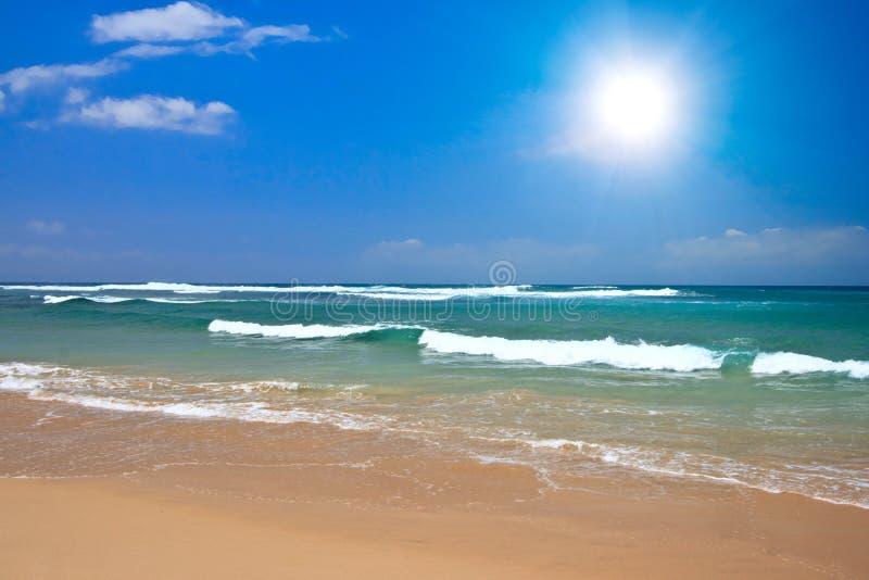 Download Playa hermosa en verano imagen de archivo. Imagen de oceánico - 7286093