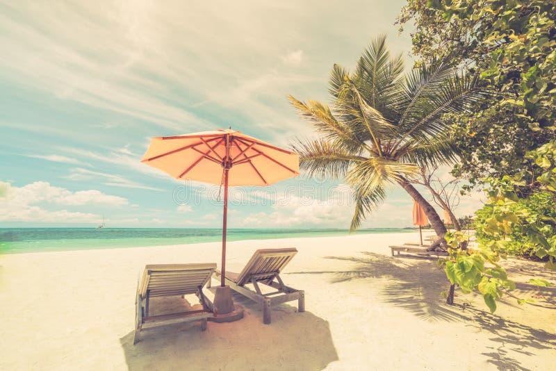 Playa hermosa Sillas en la playa arenosa cerca del mar Concepto de las vacaciones de verano y de las vacaciones Escena tropical i fotografía de archivo