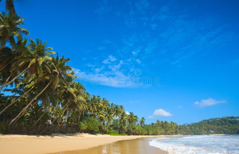 Playa idílica. Sri Lanka imagenes de archivo