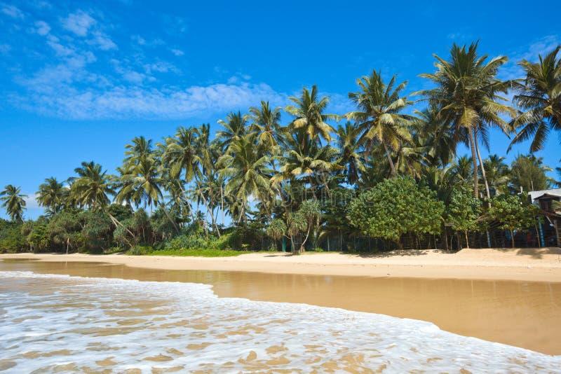 Playa idílica. Sri Lanka foto de archivo libre de regalías