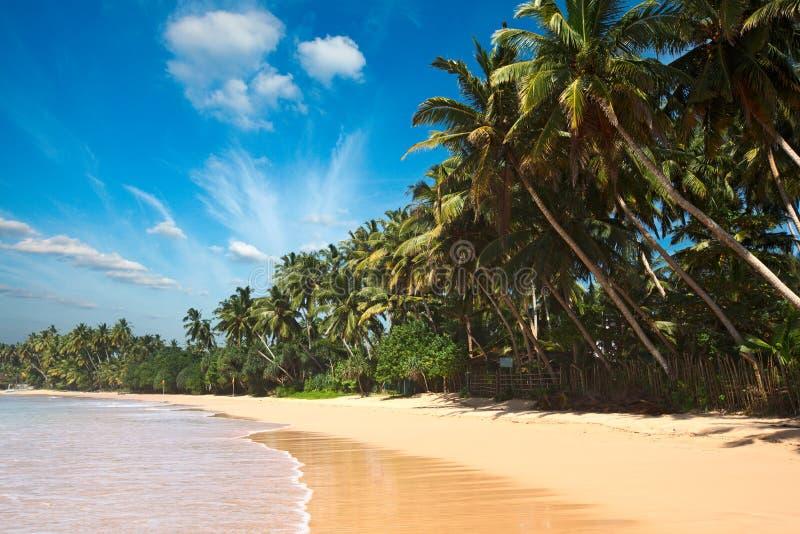 Playa idílica. Sri Lanka imagen de archivo
