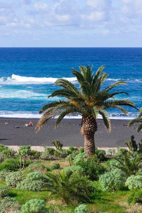Playa Jardin (giardino) della spiaggia, Puerto de la Cruz fotografia stock
