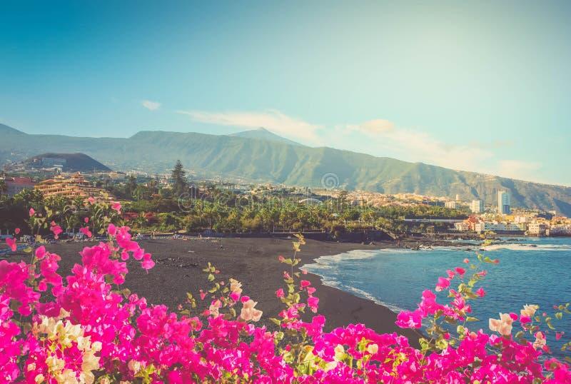 Playa Jardin, Puerto Cruz, Tenerife, Spagna immagine stock