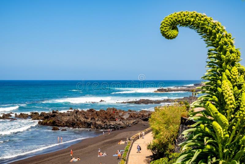 Playa Jardin - Puerto de Λα Cruz μια από τις ομορφότερες παραλίες Tenerife νησί tristan στοκ εικόνες