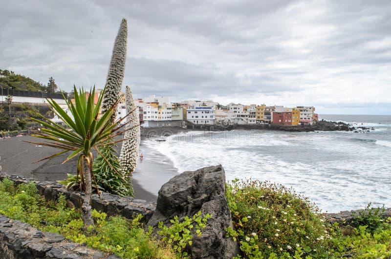 Playa jardin, Puerto Dela Cruz, Tenerife, wyspy kanaryjskie, Hiszpania zdjęcie stock