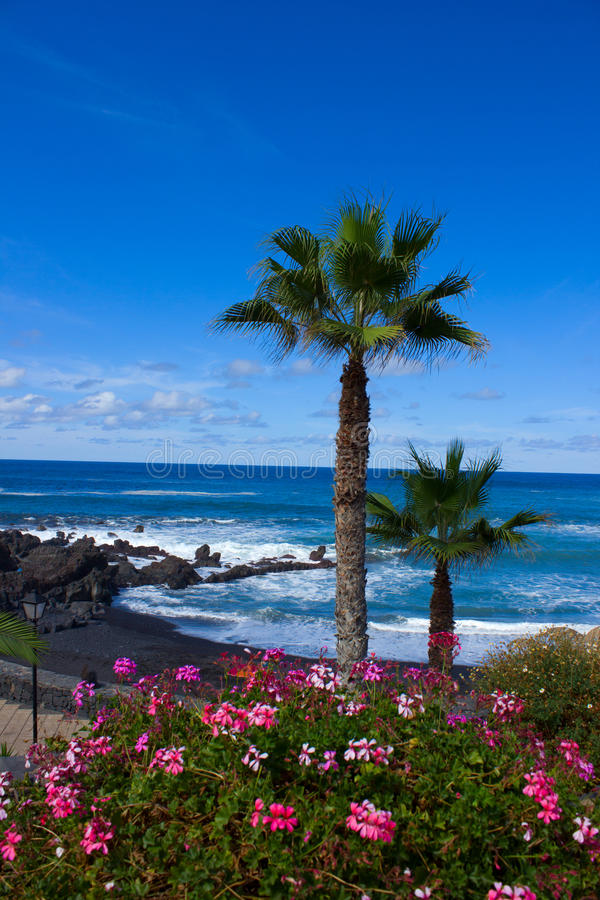 Playa Jardin, Tenerife, España fotos de archivo