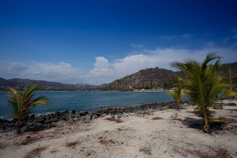 Playa lasy Gatas zdjęcia stock
