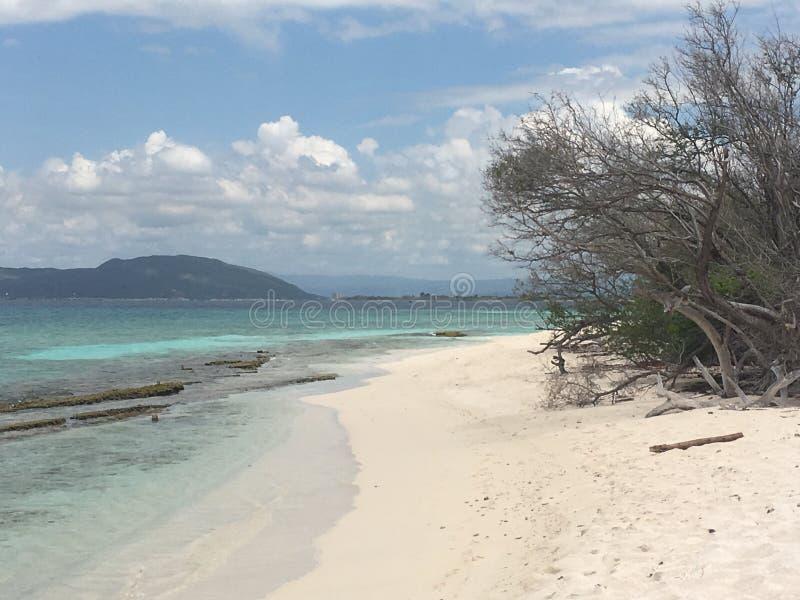 Playa limefruktcay Jamaica fotografering för bildbyråer