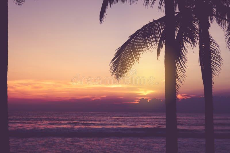 Playa limpia de la naturaleza tropical y arena blanca en verano con el cielo del sol y el fondo azules claros del bokeh fotos de archivo