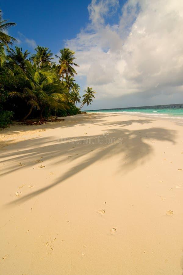 Playa maldiva de la arena imagenes de archivo