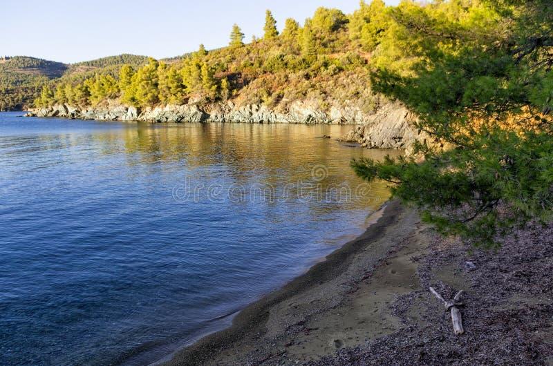 Playa maravillosa en la oscuridad en Chalkidiki, Grecia fotografía de archivo