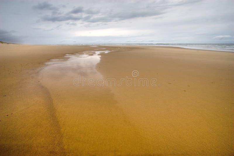 Playa muy salvaje del océano imágenes de archivo libres de regalías