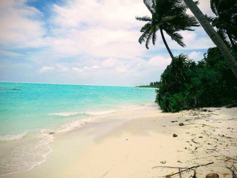 Playa, playa natural en Maldivas, Nilandhoo fotografía de archivo libre de regalías