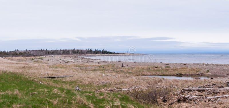 Download Playa Natural En Nuevo Brunswick Imagen de archivo - Imagen de costa, panorámico: 100532837
